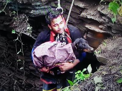 dog rescue from deep pit.